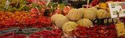 Erberia - Mercato di Rialto